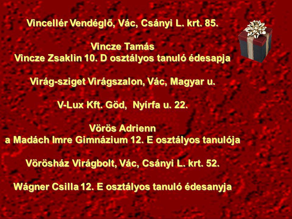 Vincellér Vendéglő, Vác, Csányi L. krt. 85. Vincze Tamás