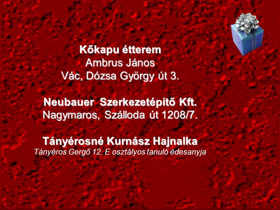 Neubauer Szerkezetépítő Kft. Nagymaros, Szálloda út 1208/7.