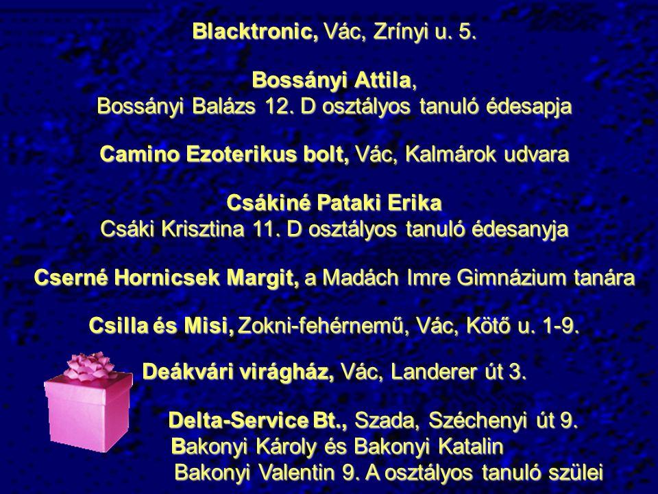 Blacktronic, Vác, Zrínyi u. 5. Bossányi Attila,