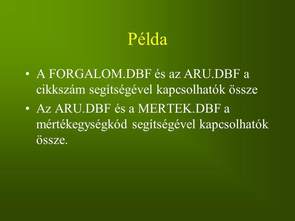 Példa A FORGALOM.DBF és az ARU.DBF a cikkszám segítségével kapcsolhatók össze.