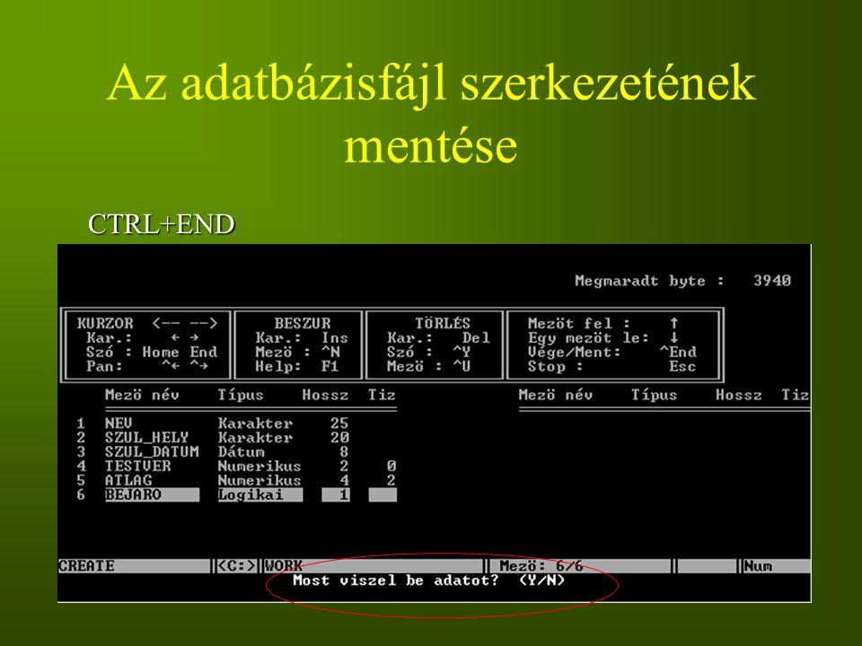 Az adatbázisfájl szerkezetének mentése
