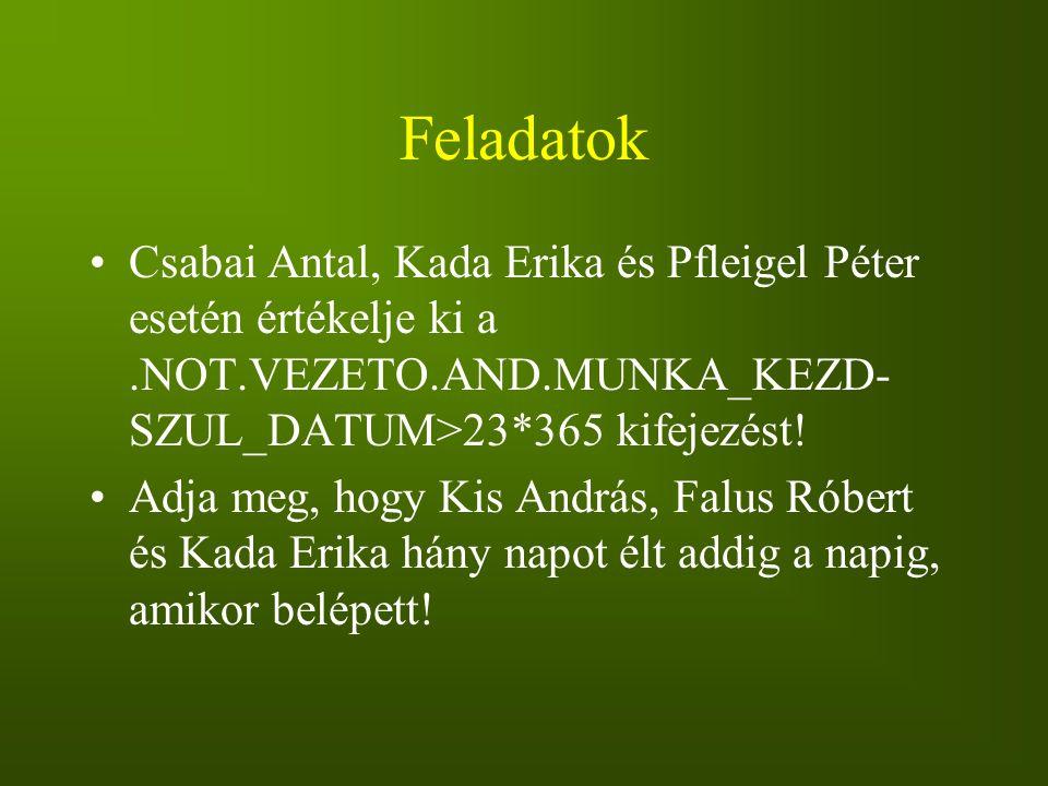 Feladatok Csabai Antal, Kada Erika és Pfleigel Péter esetén értékelje ki a .NOT.VEZETO.AND.MUNKA_KEZD-SZUL_DATUM>23*365 kifejezést!