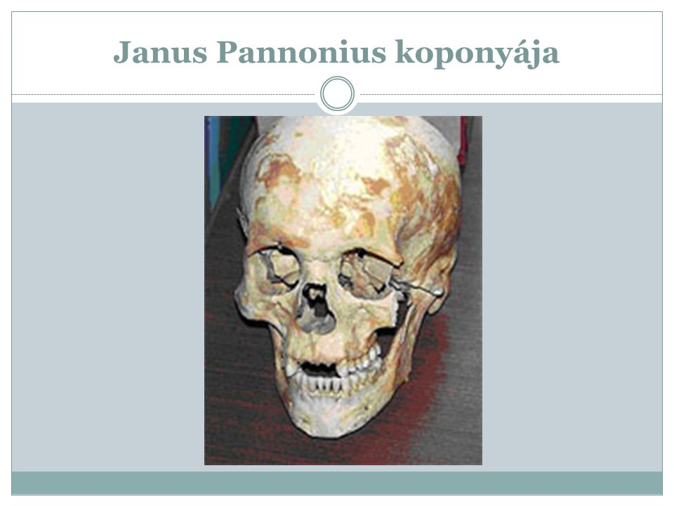 Janus Pannonius koponyája