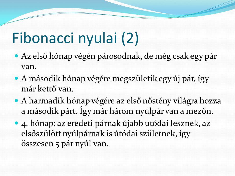 Fibonacci nyulai (2) Az első hónap végén párosodnak, de még csak egy pár van. A második hónap végére megszületik egy új pár, így már kettő van.