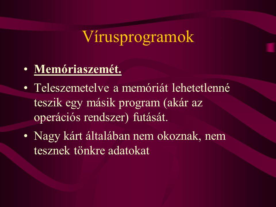 Vírusprogramok Memóriaszemét.