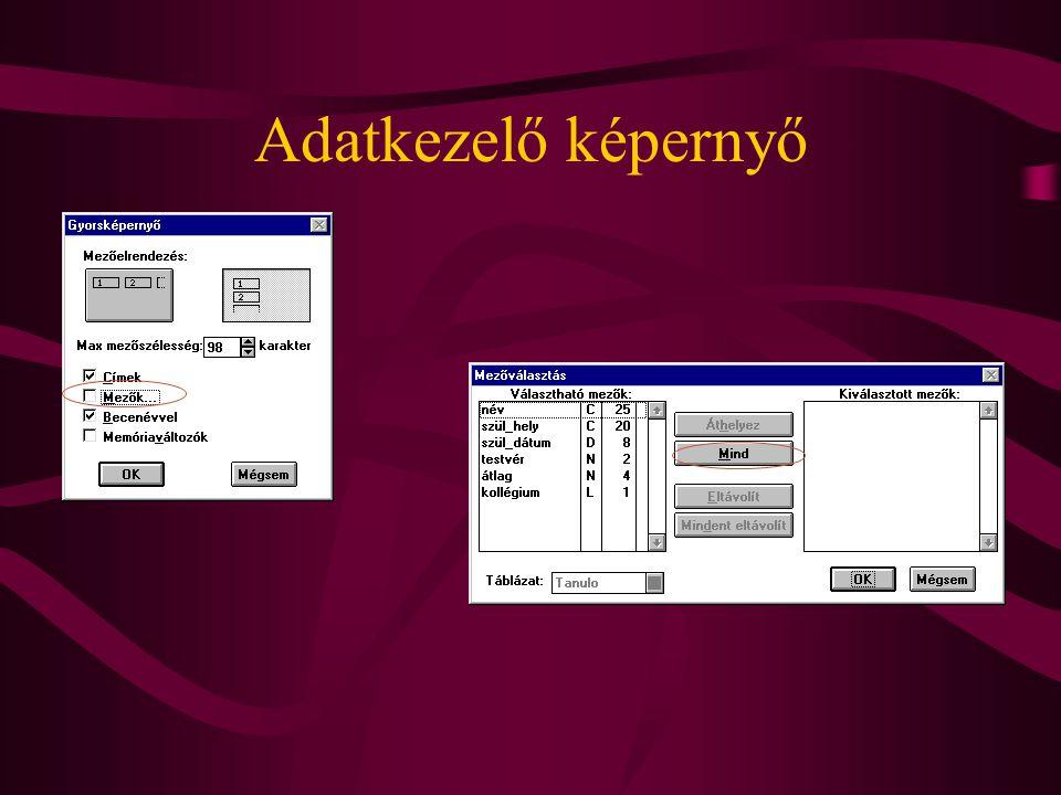 Adatkezelő képernyő