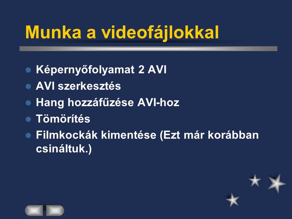 Munka a videofájlokkal