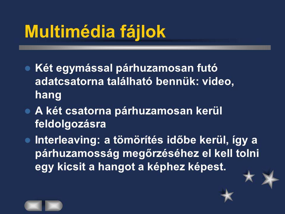 Multimédia fájlok Két egymással párhuzamosan futó adatcsatorna található bennük: video, hang. A két csatorna párhuzamosan kerül feldolgozásra.