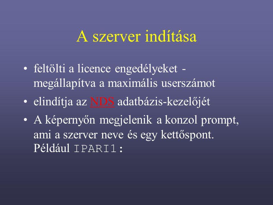 A szerver indítása feltölti a licence engedélyeket - megállapítva a maximális userszámot. elindítja az NDS adatbázis-kezelőjét.
