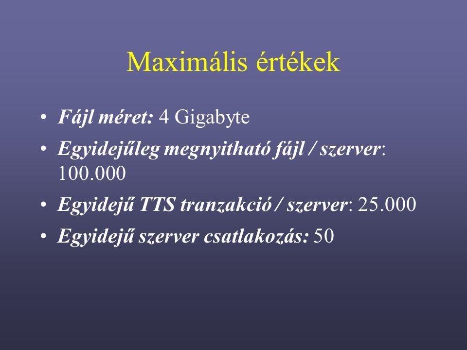 Maximális értékek Fájl méret: 4 Gigabyte