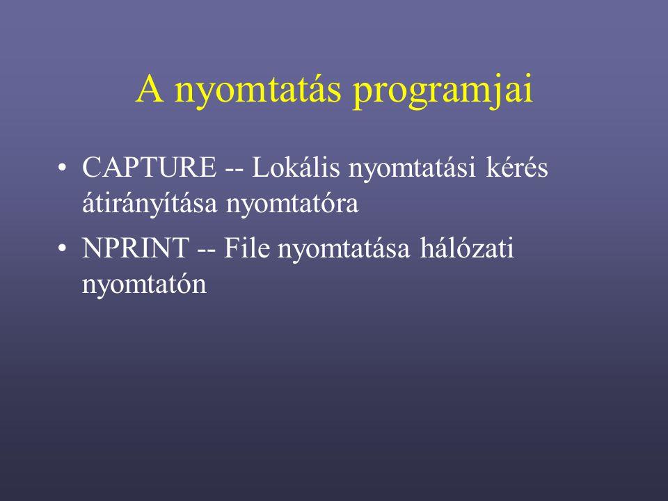 A nyomtatás programjai
