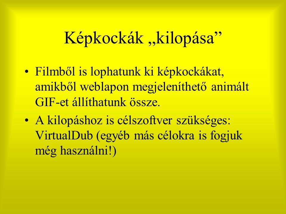 """Képkockák """"kilopása Filmből is lophatunk ki képkockákat, amikből weblapon megjeleníthető animált GIF-et állíthatunk össze."""