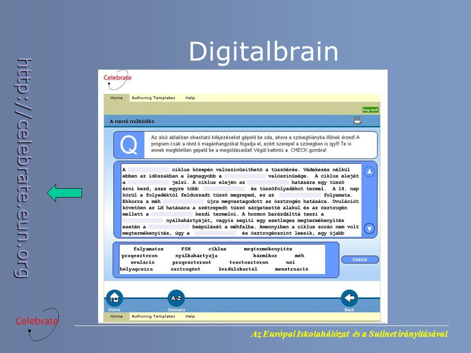 Digitalbrain