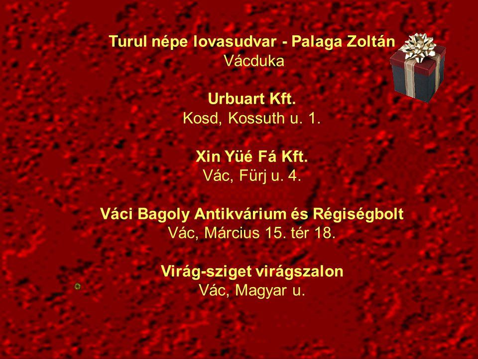 Turul népe lovasudvar - Palaga Zoltán