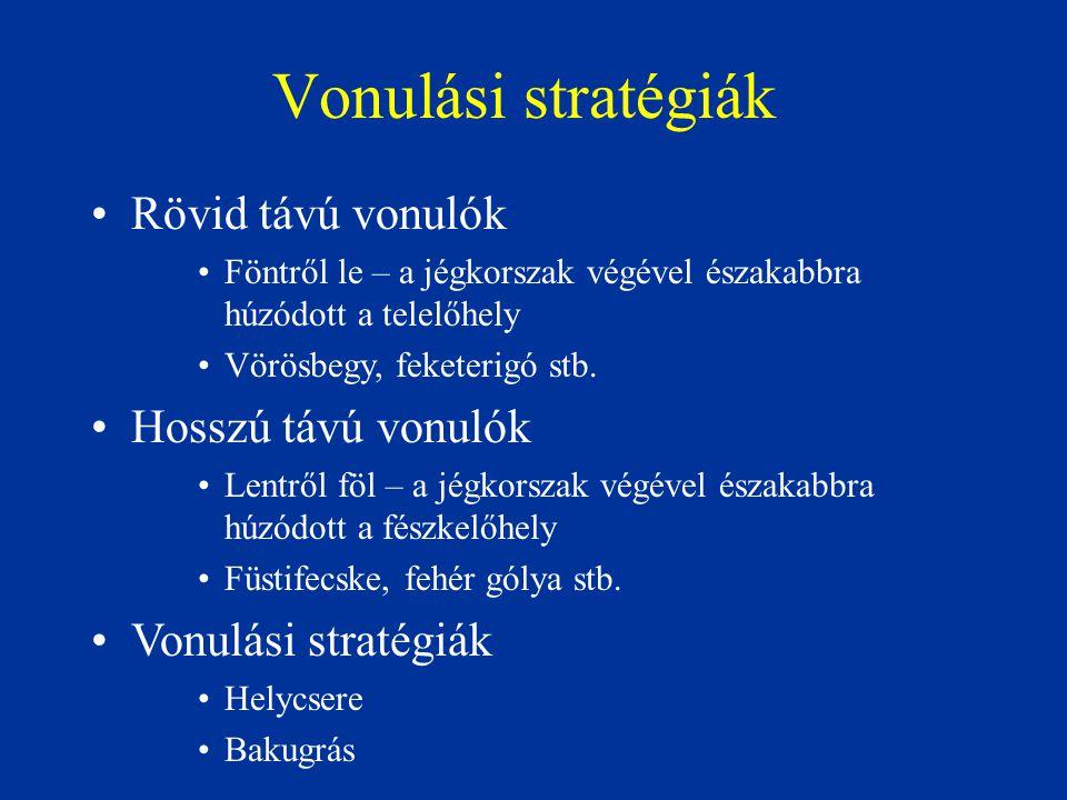 Vonulási stratégiák Rövid távú vonulók Hosszú távú vonulók