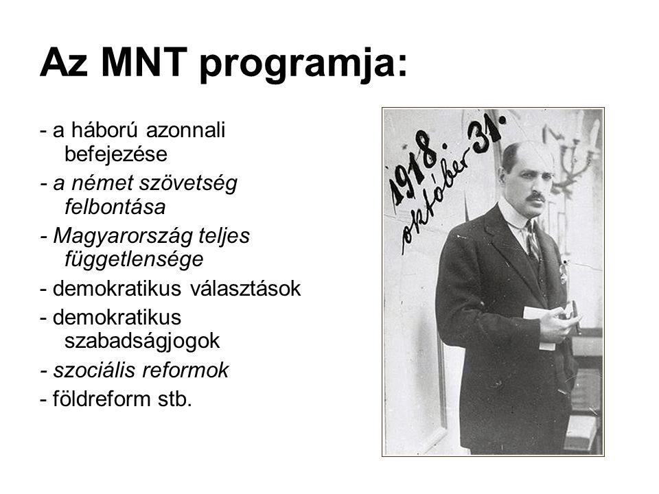 Az MNT programja: - a háború azonnali befejezése
