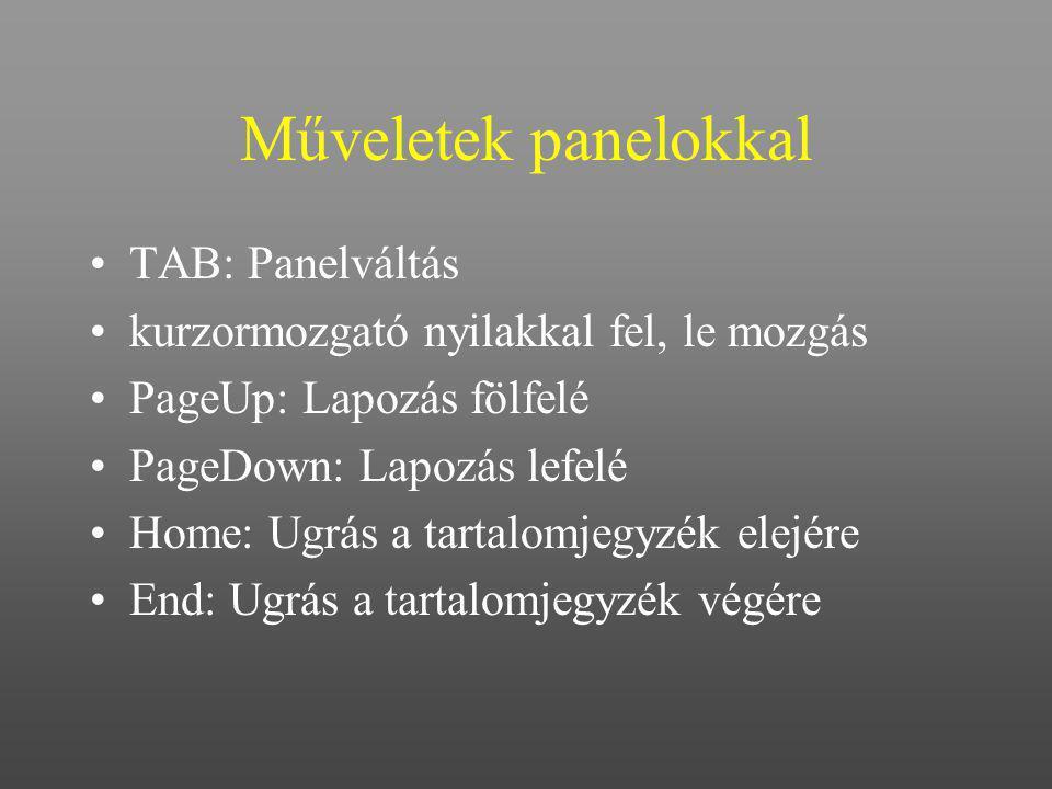 Műveletek panelokkal TAB: Panelváltás