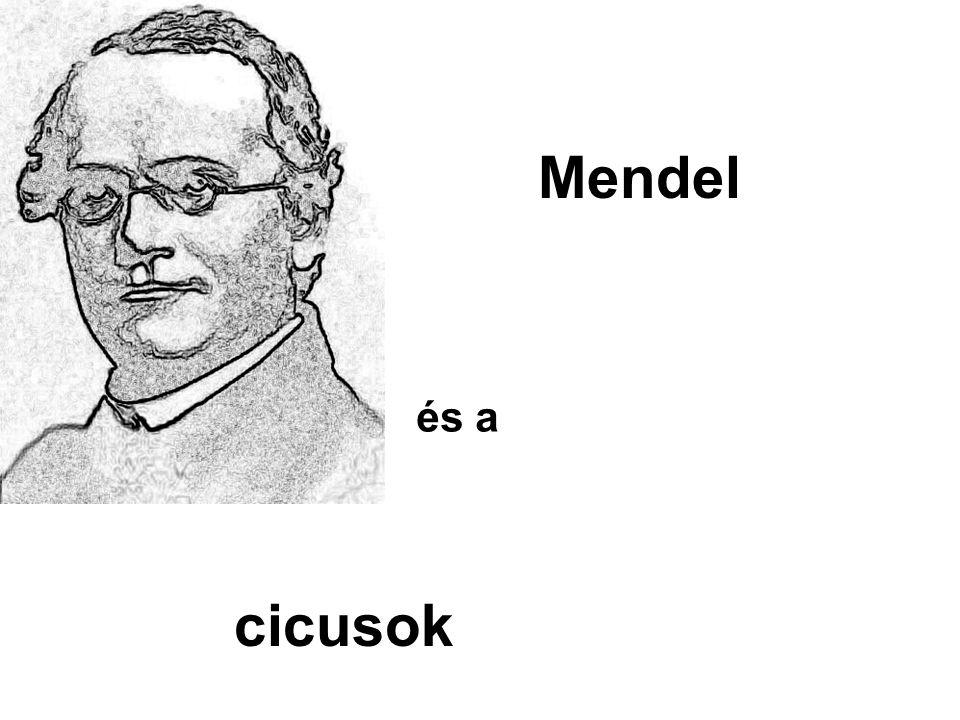 Mendel és a cicusok