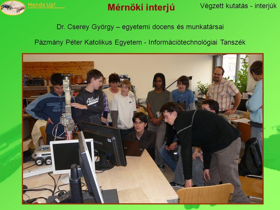 Mérnöki interjú Végzett kutatás - interjúk