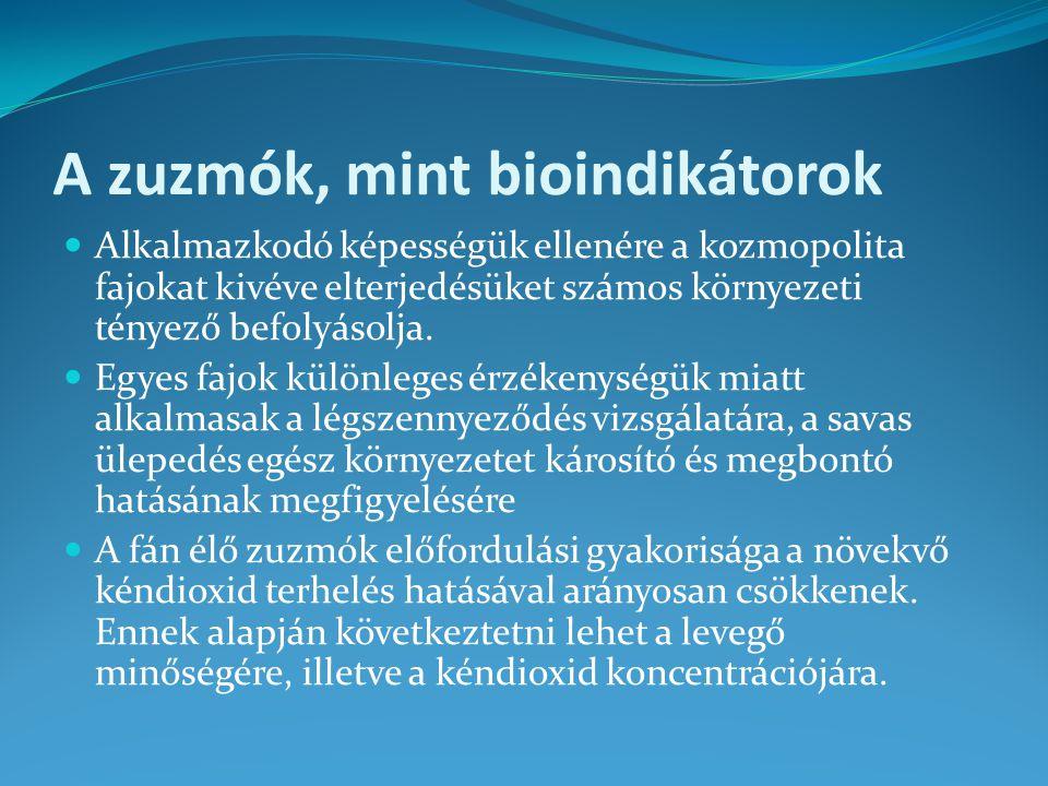 A zuzmók, mint bioindikátorok