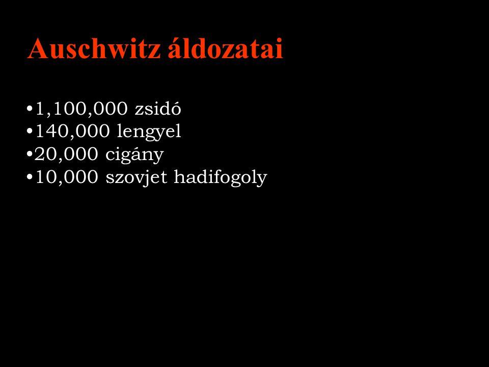 Auschwitz áldozatai 1,100,000 zsidó 140,000 lengyel 20,000 cigány