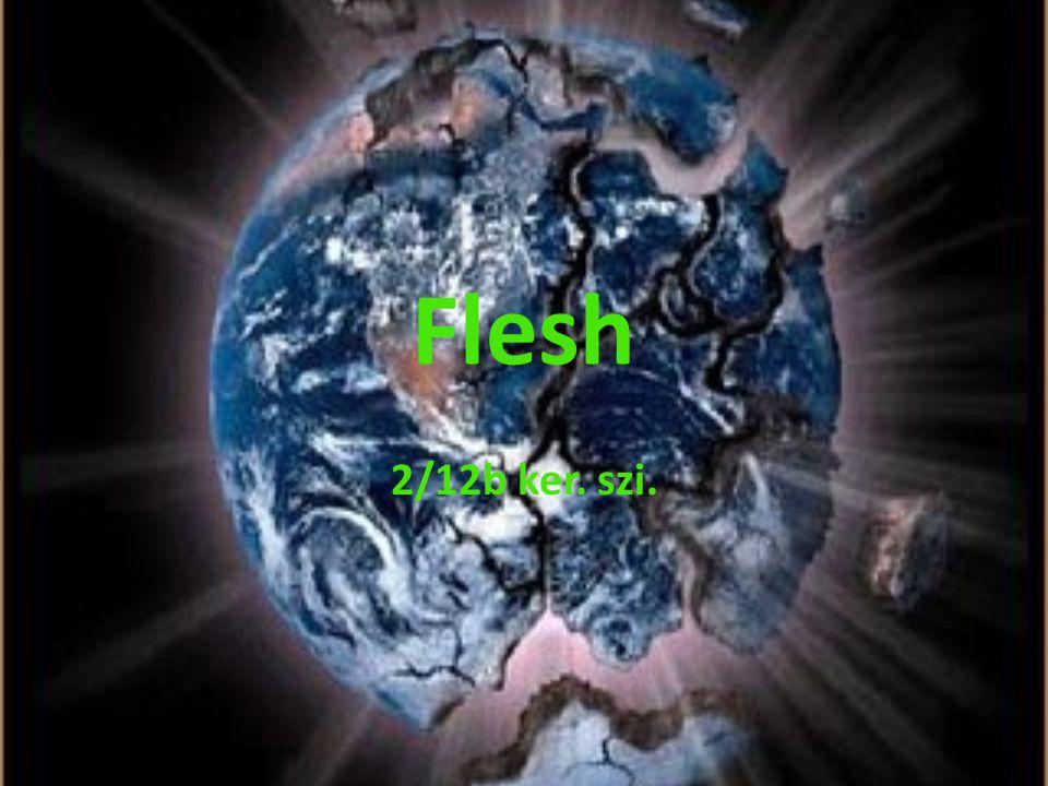 Flesh 2/12b ker. szi.