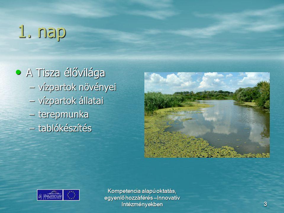 1. nap A Tisza élővilága vízpartok növényei vízpartok állatai