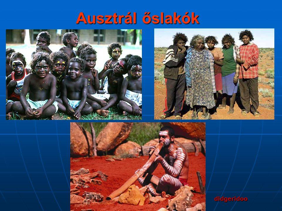 Ausztrál őslakók didgeridoo