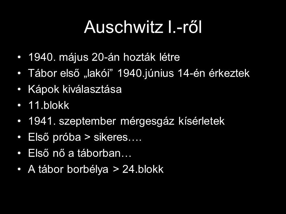 Auschwitz I.-ről 1940. május 20-án hozták létre