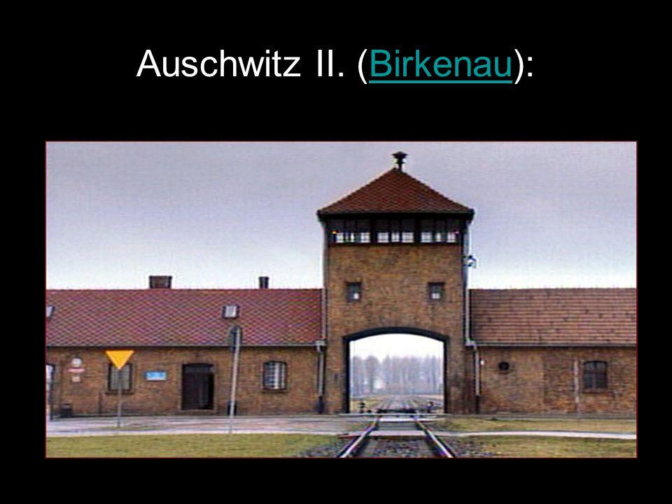 Auschwitz II. (Birkenau):