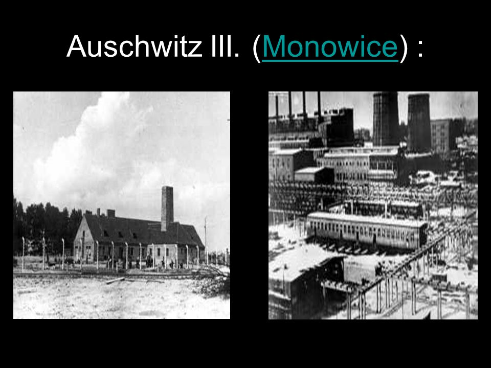 Auschwitz III. (Monowice) :