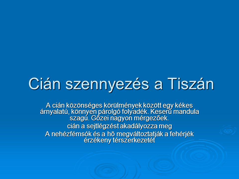 Cián szennyezés a Tiszán
