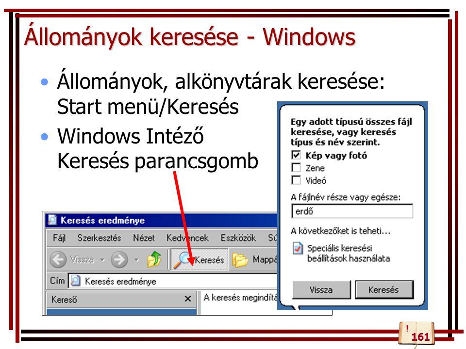 Állományok keresése - Windows