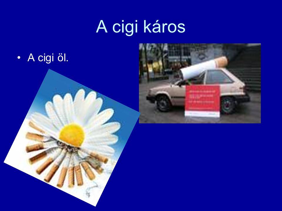 A cigi káros A cigi öl.