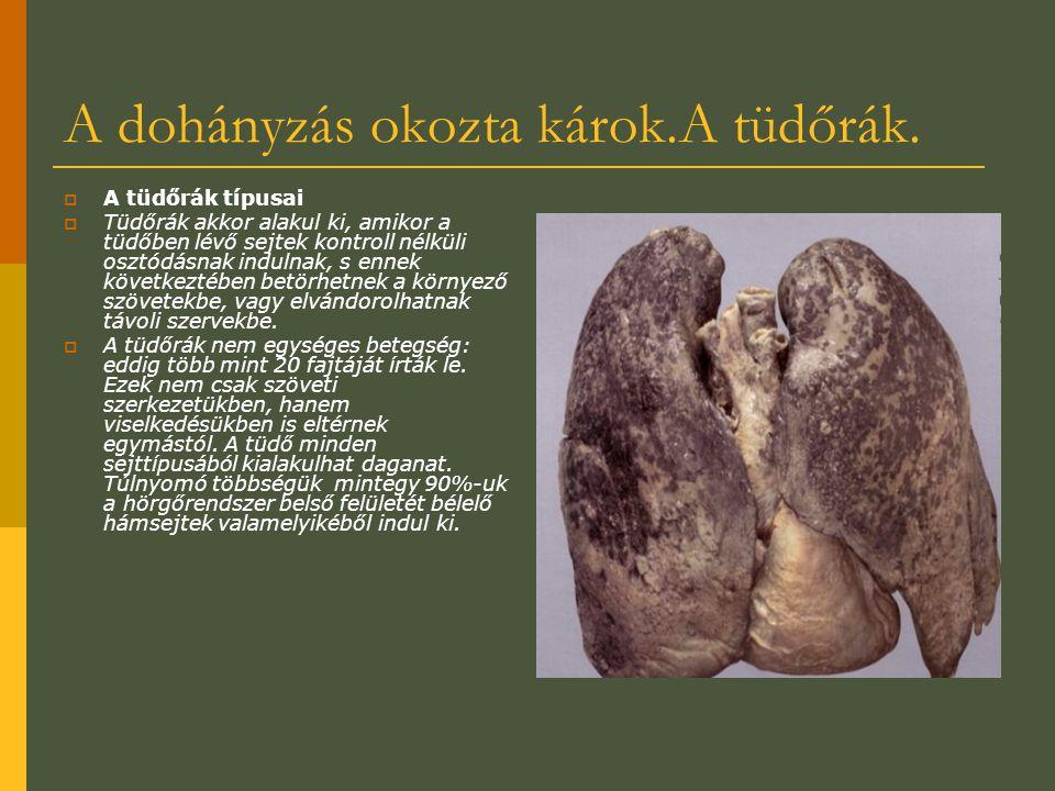 A dohányzás okozta károk.A tüdőrák.