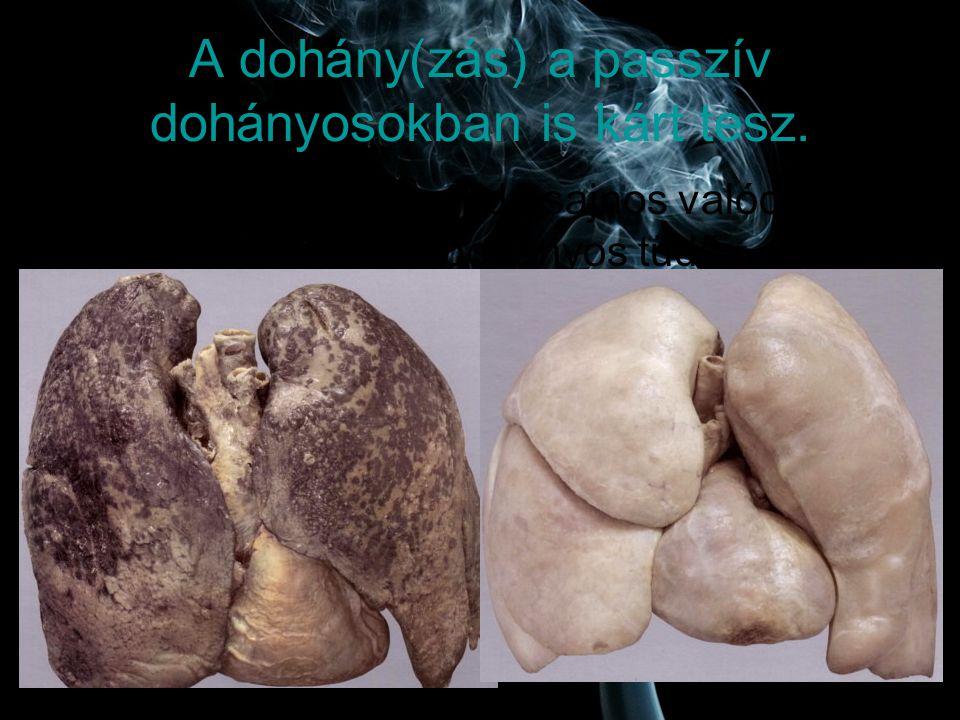 A dohány(zás) a passzív dohányosokban is kárt tesz.