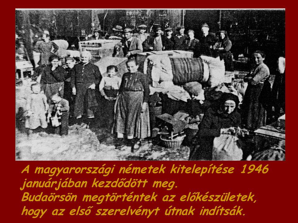 A magyarországi németek kitelepítése 1946 januárjában kezdődött meg