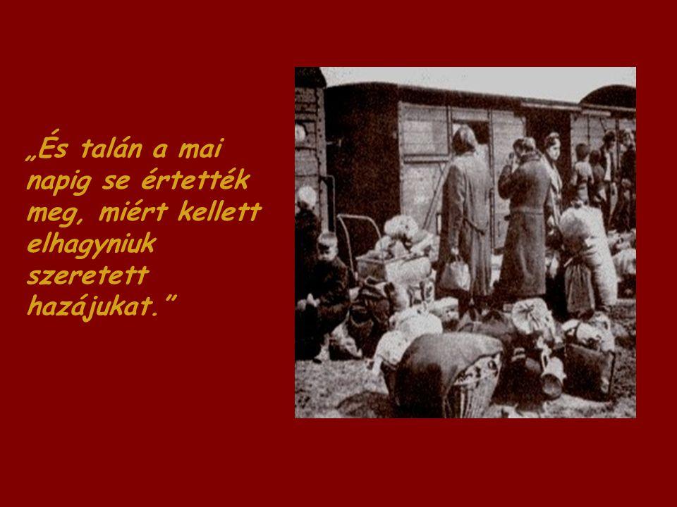 """""""És talán a mai napig se értették meg, miért kellett elhagyniuk szeretett hazájukat."""