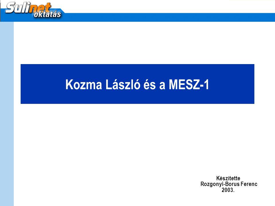 Készítette Rozgonyi-Borus Ferenc 2003.