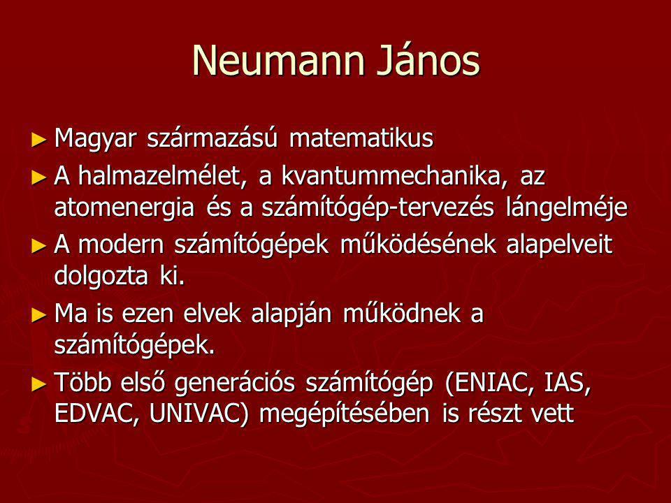 Neumann János Magyar származású matematikus