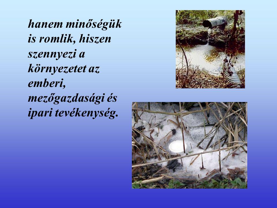 hanem minőségük is romlik, hiszen szennyezi a környezetet az emberi, mezőgazdasági és ipari tevékenység.