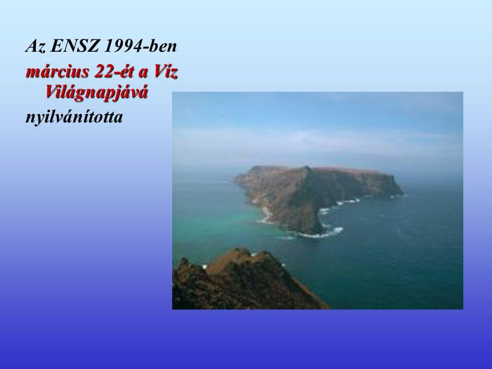 Az ENSZ 1994-ben március 22-ét a Víz Világnapjává nyilvánította