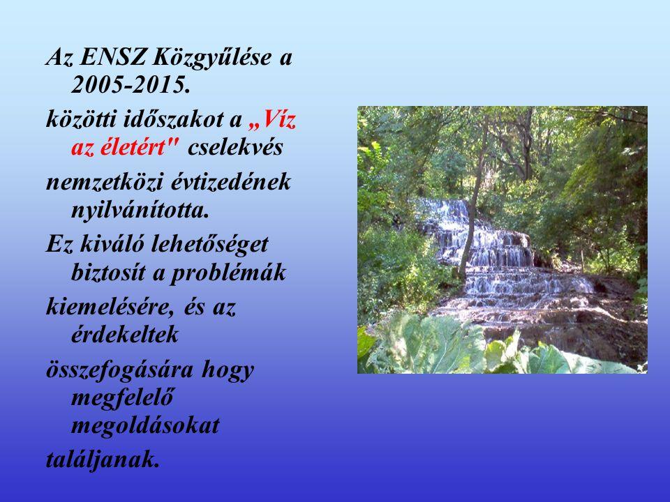 """Az ENSZ Közgyűlése a 2005-2015. közötti időszakot a """"Víz az életért cselekvés. nemzetközi évtizedének nyilvánította."""