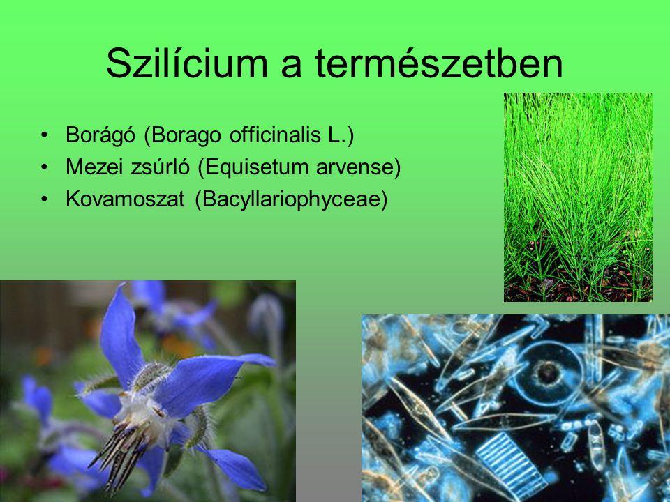 Szilícium a természetben