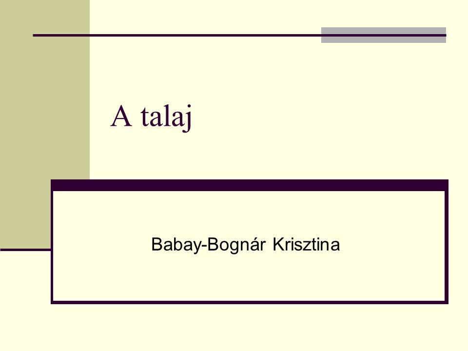 Babay-Bognár Krisztina