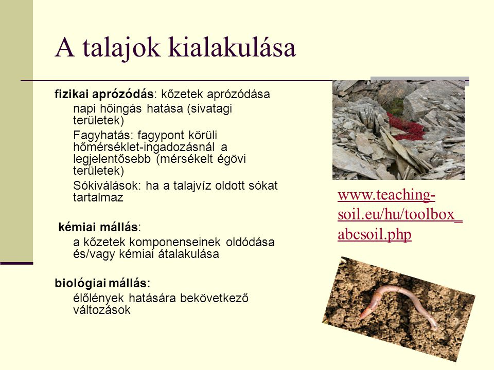 A talajok kialakulása www.teaching-soil.eu/hu/toolbox_abcsoil.php