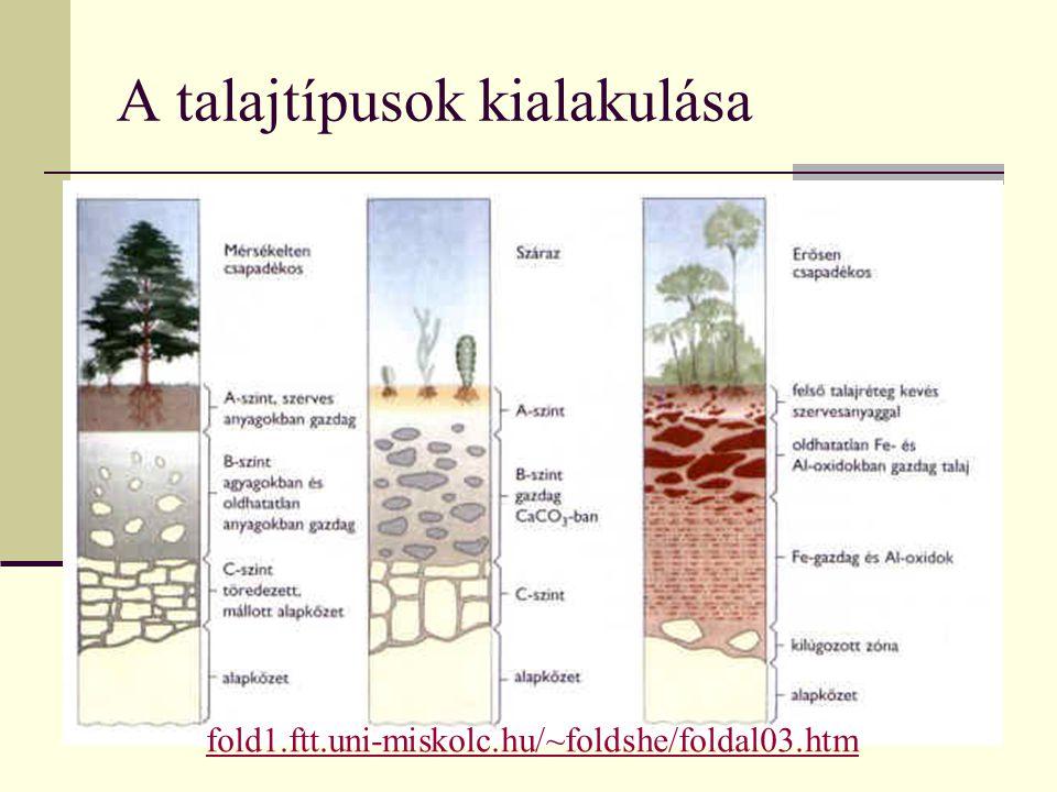 A talajtípusok kialakulása