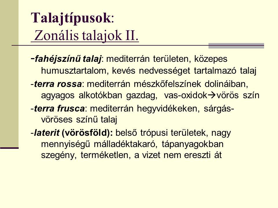 Talajtípusok: Zonális talajok II.