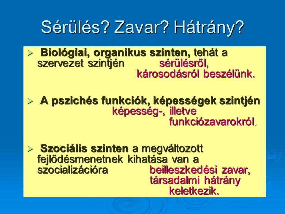 Sérülés Zavar Hátrány Biológiai, organikus szinten, tehát a szervezet szintjén sérülésről, károsodásról beszélünk.