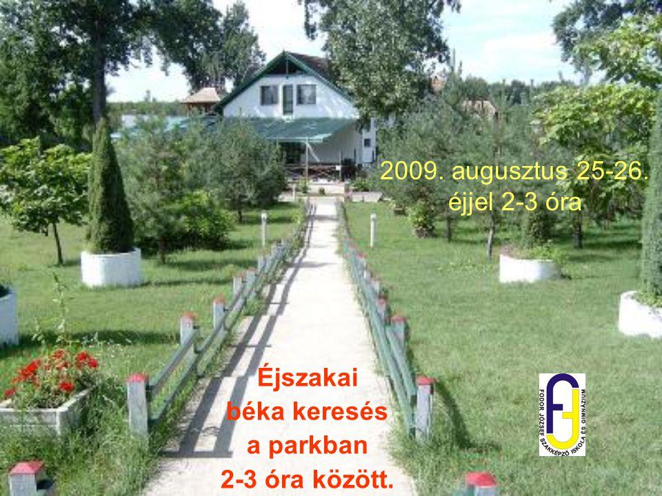 2009. augusztus 25-26. éjjel 2-3 óra Éjszakai béka keresés a parkban 2-3 óra között.